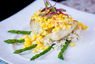Pan Seared Gulf Fish
