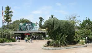 sd zoo